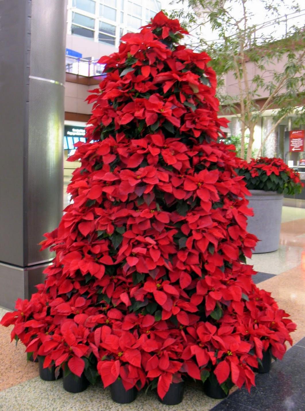 Christmas Tree Red Theme